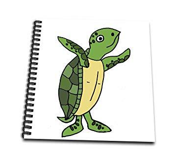 Cartoon Sea Turtle Drawing