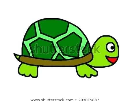 450x358 turtle cartoon drawing turtle cute turtle cartoon drawings