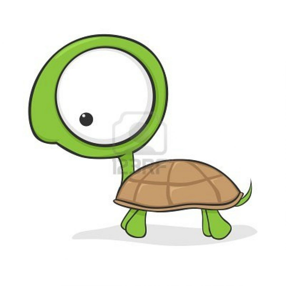 40 Most Popular Step By Step Cartoon Easy Turtle Drawing