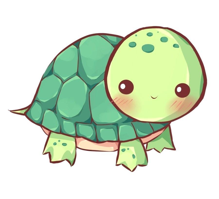 900x820 drawing turtle draw sea turtle drawing turtle robot