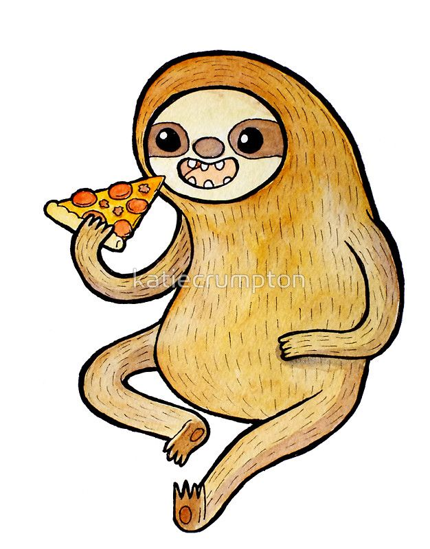 626x800 sloth eating pizza sticker in sloths sloth eating