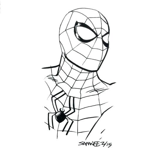 512x512 spiderman drawings spider man black and white spider man cartoon