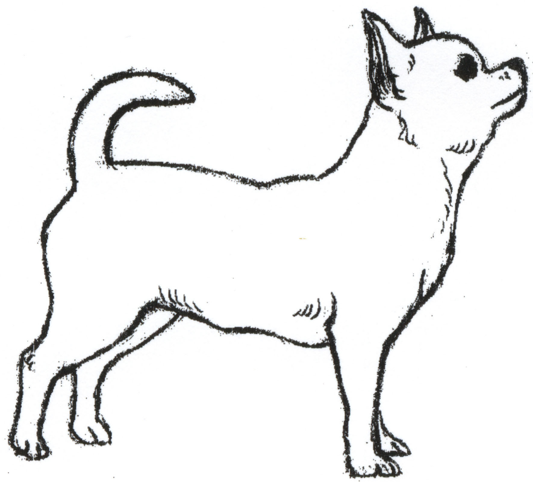 1770x1602 Dog And Boy Drawing Make A Simple Cat Easy Iydunetwork