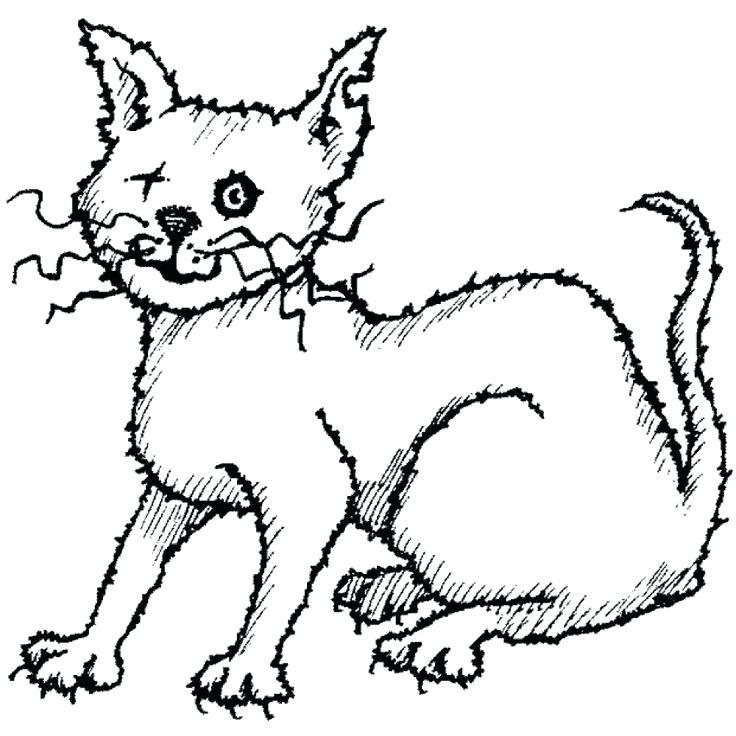 736x736 Scared Cat Drawing Scary Cat Cats Library Scared Cat Face Drawing