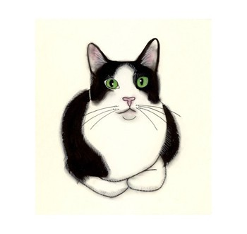 350x331 Images Black And White Clipart Cat Eyes
