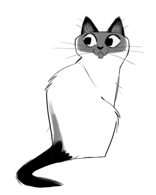 500x625 Daily Drawing Cat For Free Download