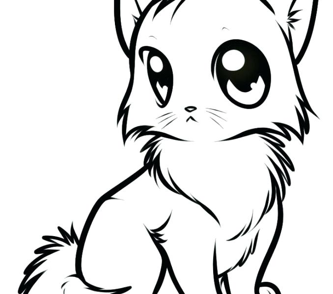 678x600 cute cat pictures to draw cute cat drawing cute cat pictures you
