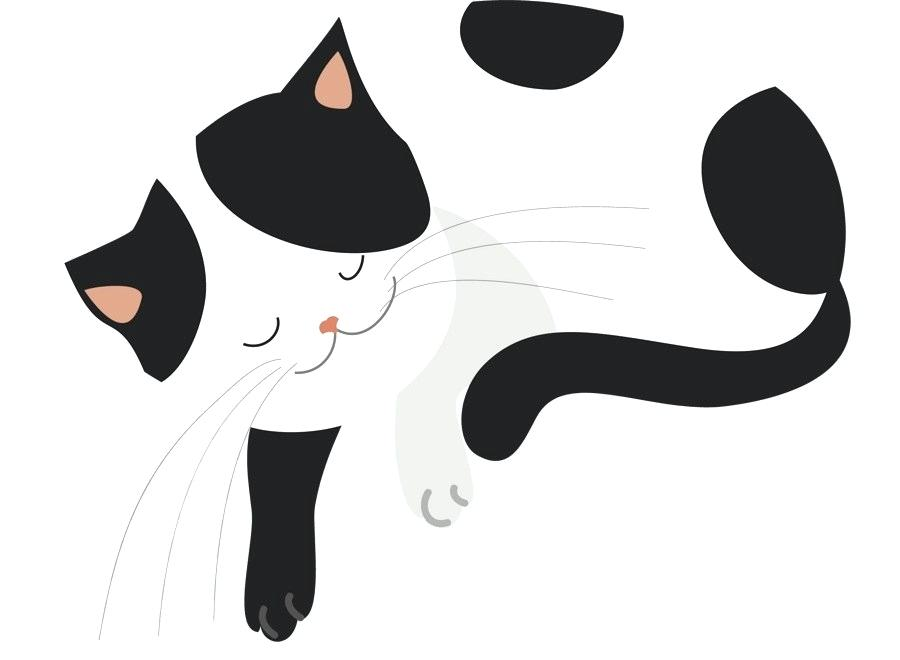 900x660 Simple Cat Drawing Simple Cat Drawing Step