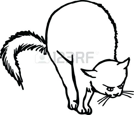 450x385 Scared Cat Drawing