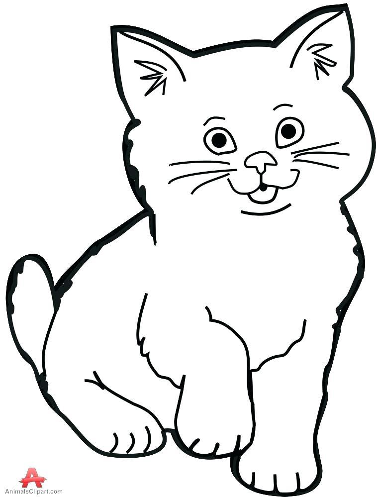 758x999 Cat Face Outline