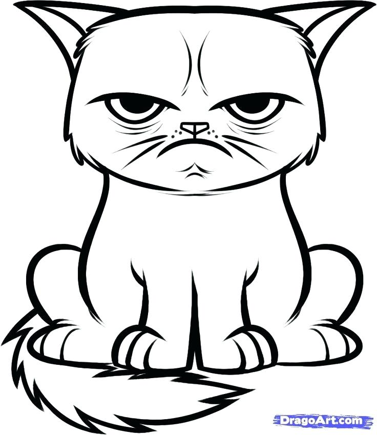 736x849 Easy To Draw Cats How To Draw A Cat Easy To Draw Cats Step