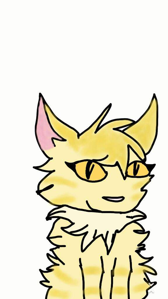 576x1024 Warrior Cat Drawing! Warriors Amino