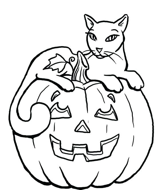 580x664 Online Coloring Pages For Adults Cats And Cucumbers Scared Quotes