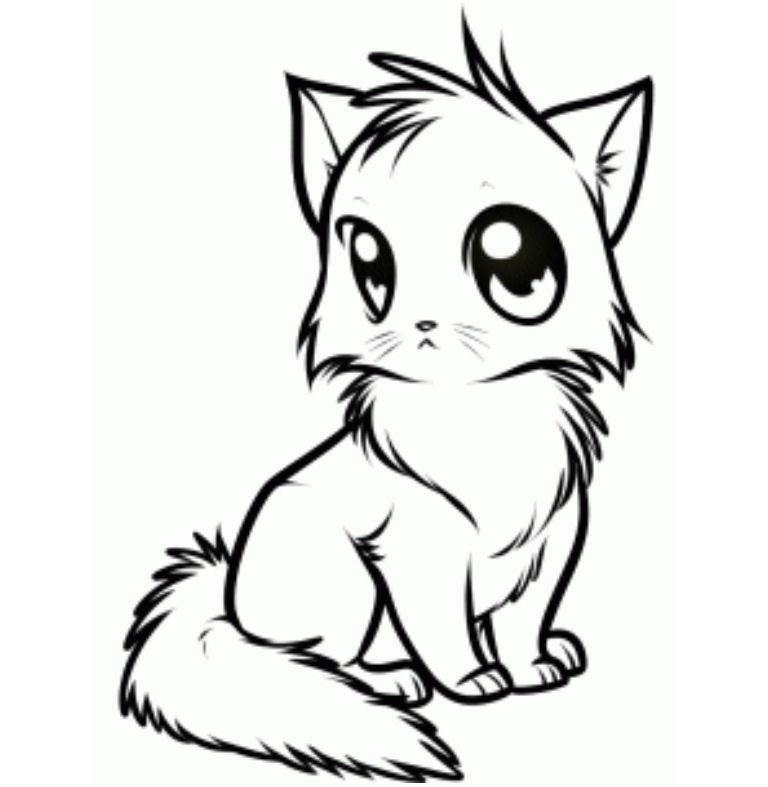 768x787 Cat Line Art