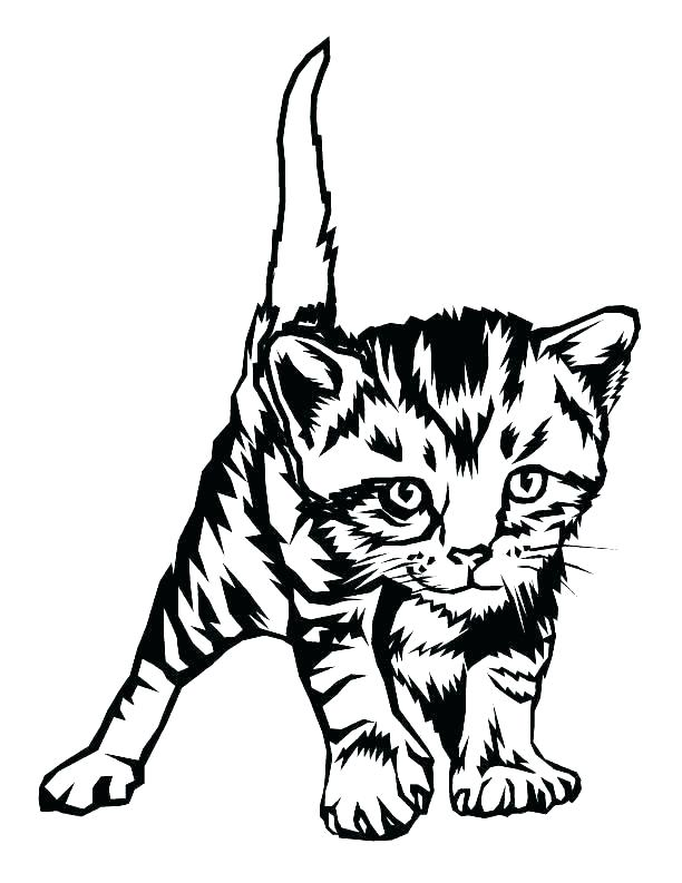 612x793 Free Coloring Pages Cats Free Coloring Pages Cats Kittens Free