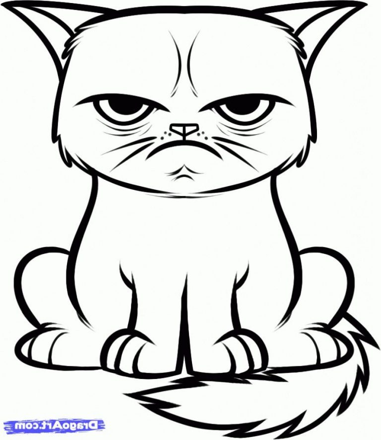 768x887 Image Result For Cats Drawings Easy Coloring Pages Drawings Cat