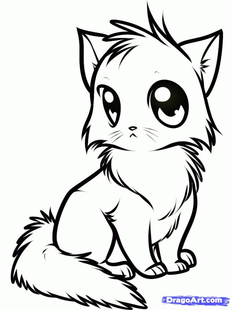 766x1024 Coloring Pages In Cat Drawing