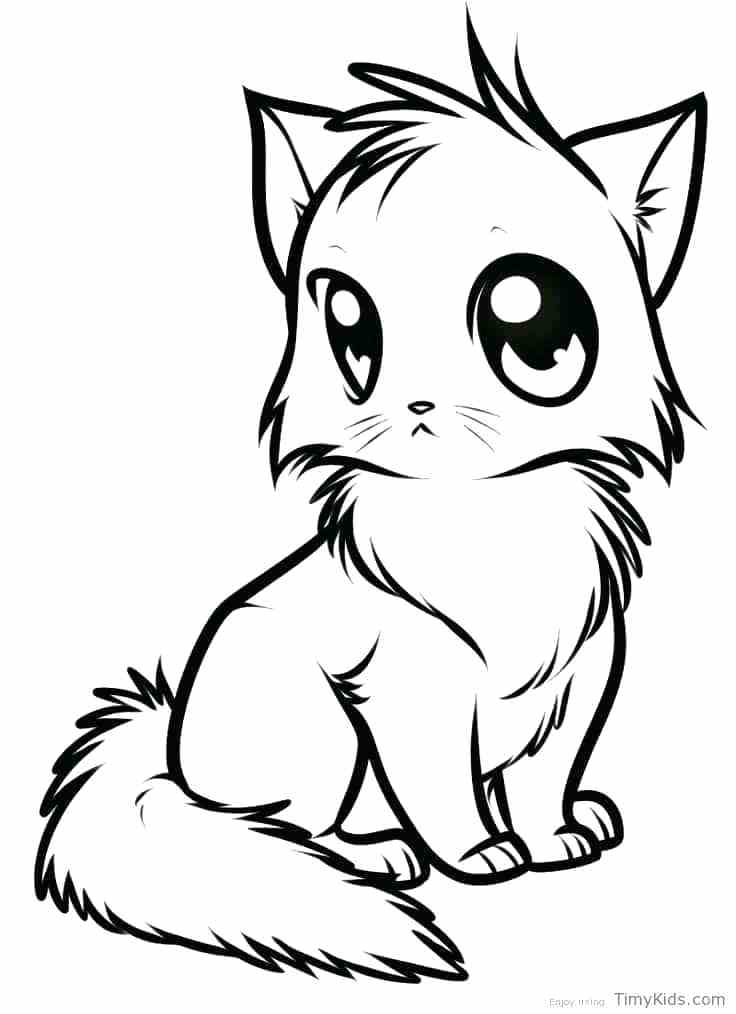 736x1014 Cat Coloring Pages Anime Cat Coloring