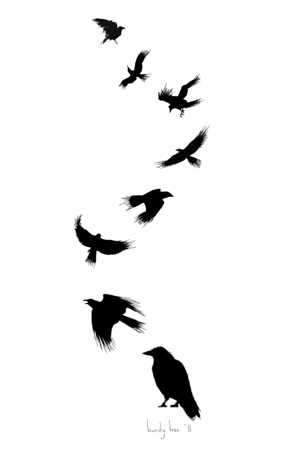 920x1462 Tattoo Flight Crow Drawing Common Ink Bird