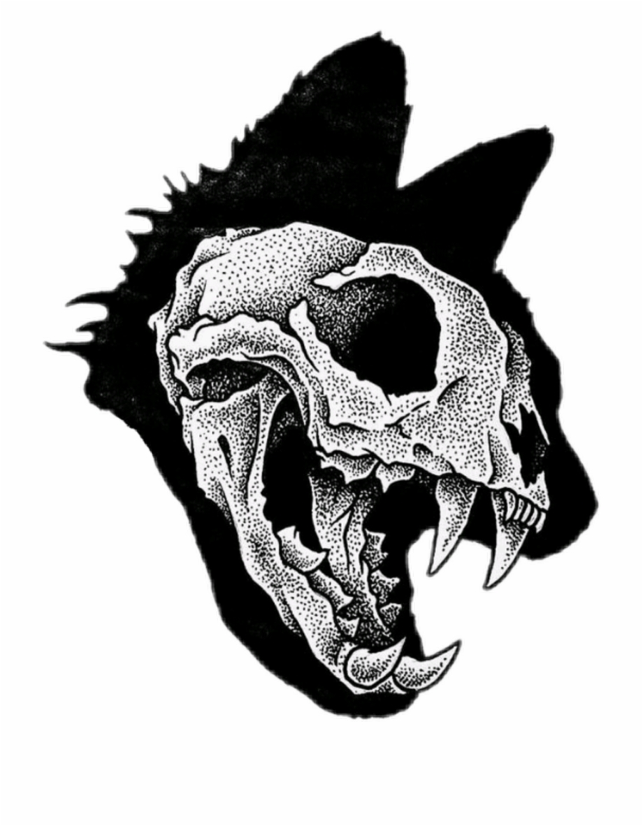 920x1182 Cat Skull Download Free Clipart With A Transparent