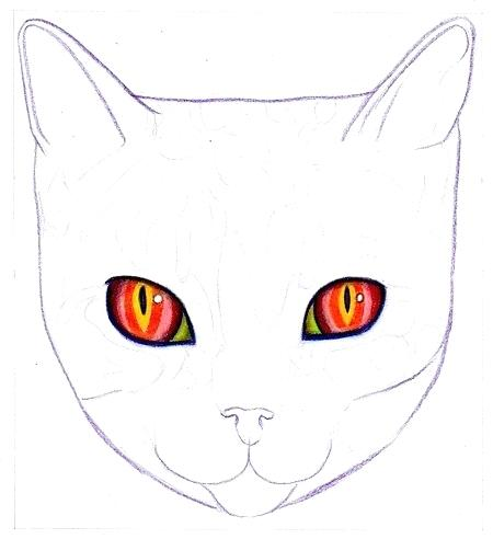 450x492 Kitty Face Drawing How To Draw A Cat On Art Is Fun Kitty Face Line