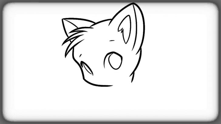 728x410 Simple Cat Face Drawing Realistic A On Person Picture Color