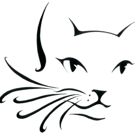 539x536 Cat Drawing Outline Begin Sketching The Outline Cat Face Drawing