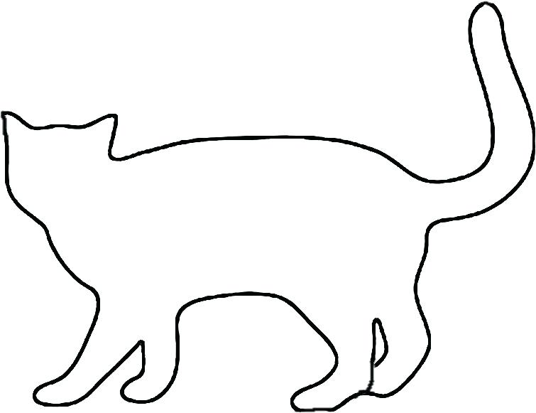 755x581 Free Whiskers Brushes Cute Cat Head Vector Illustration Doodle