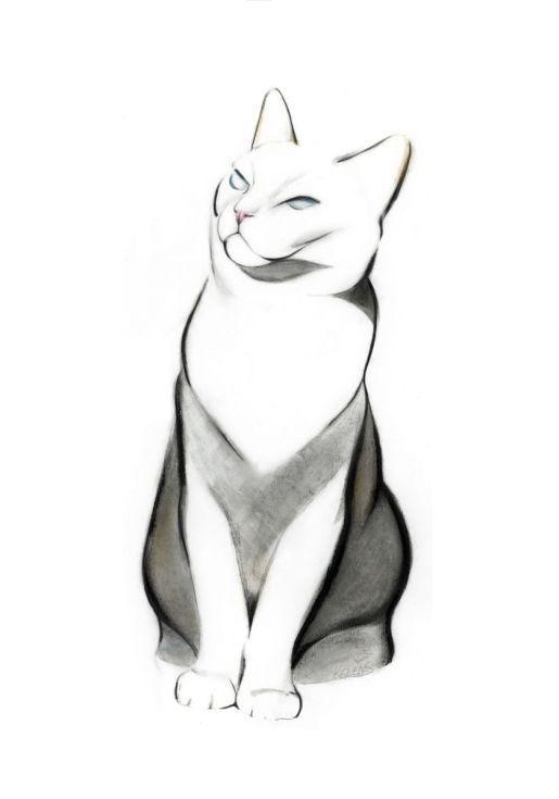 515x735 Proud Cat Minimal Art Cat Art Print, Cats, Art