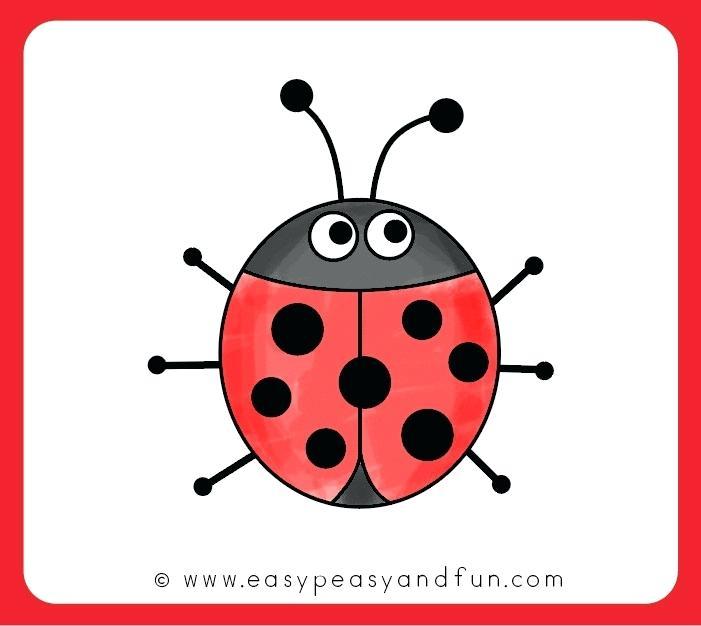 701x626 how to draw ladybug color your ladybug drawing how to draw ladybug