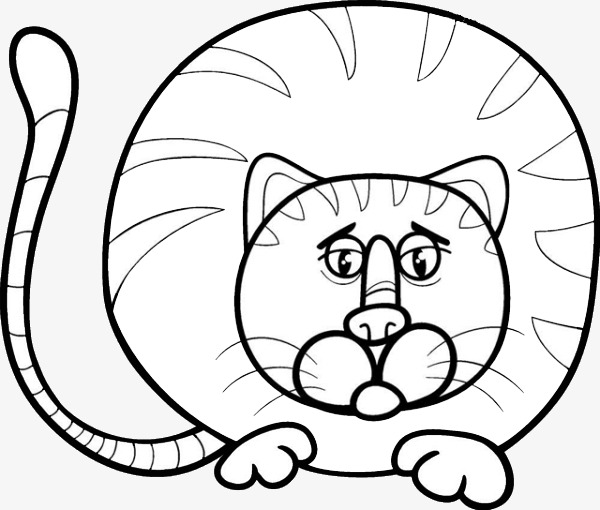 600x510 chubby cat nose, cat clipart, nose clipart, chubby png image