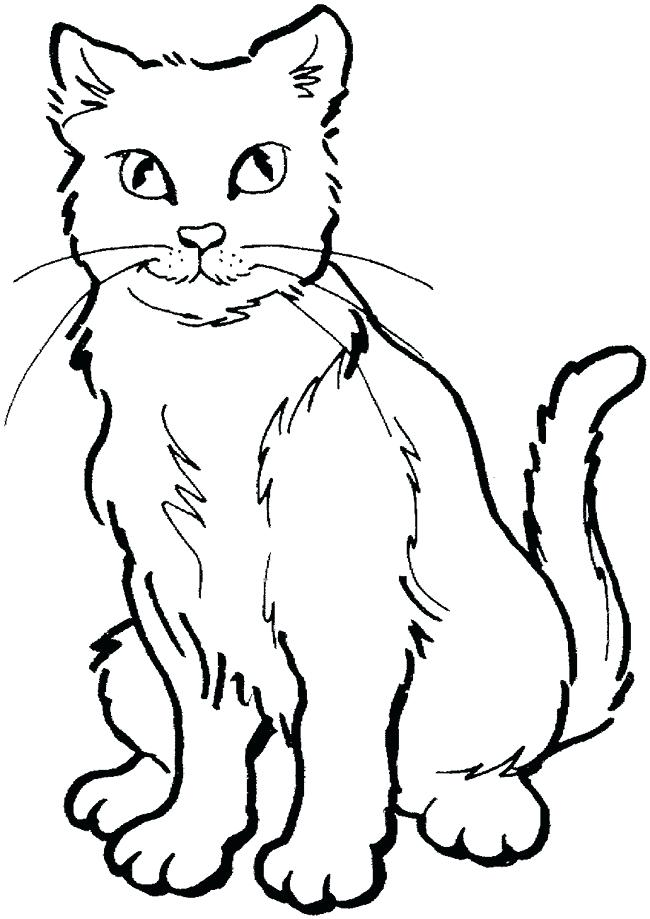 650x919 Cat Outlines Cat Eyes Outline Drawing