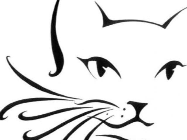 640x480 Line Drawing Of A Cat Face Cat Outline Cheek Arm Design Ae Ae