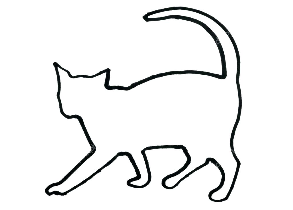 1023x734 Outline Of A Cat Dog Cat Outline Drawing