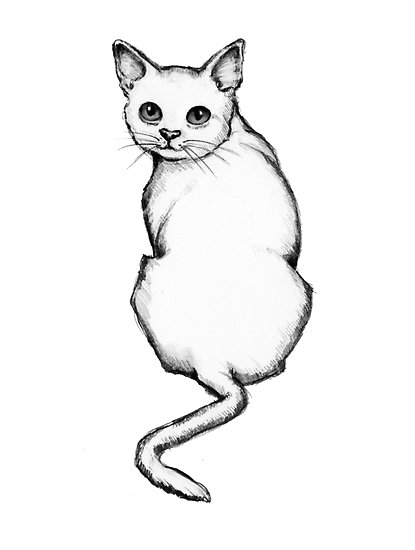 415x550 Cat Outline Drawing, Looking Over Shoulder, Kitty Posters