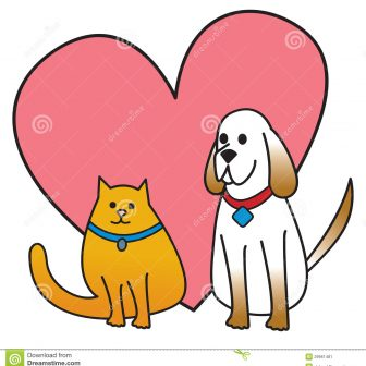 336x336 Cat And Dog Cartoon Outline Drawing Clipart Man Kid Cute Anime