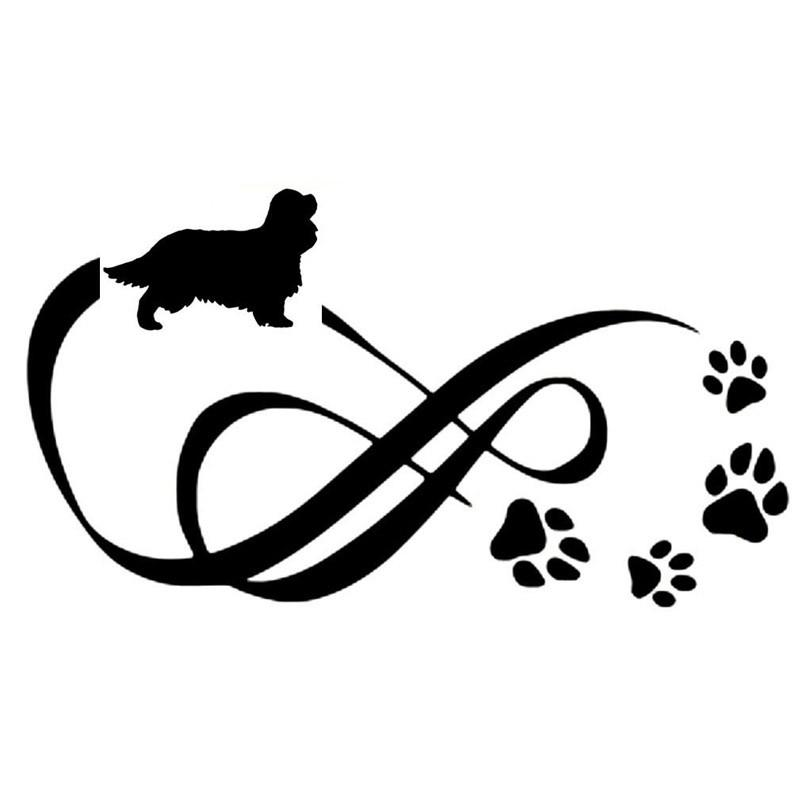 800x800 Cavalier Eternity Animal Paw Print Car Decal I Love Cat Socks