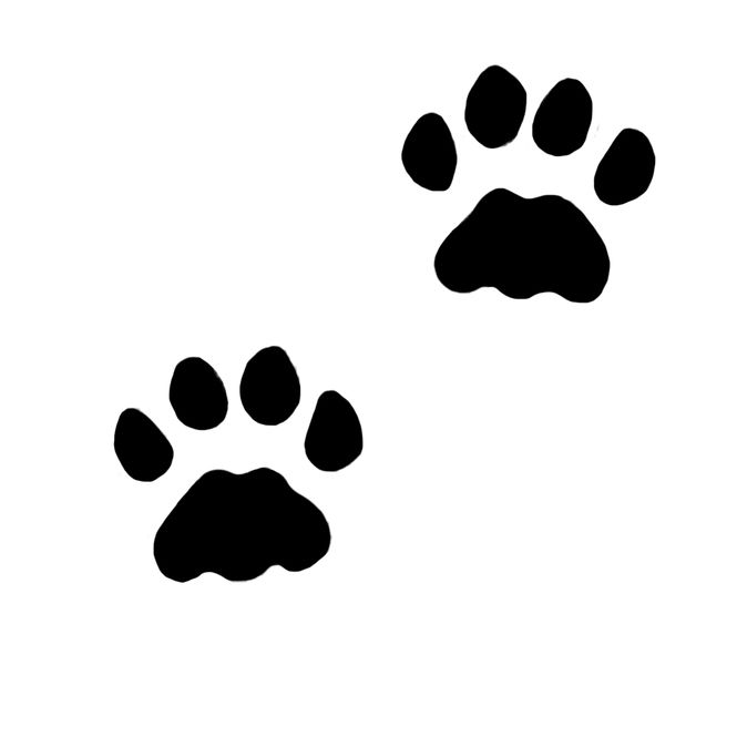 665x665 Inky Cats, Cat Paws, Paw Print Clip Art