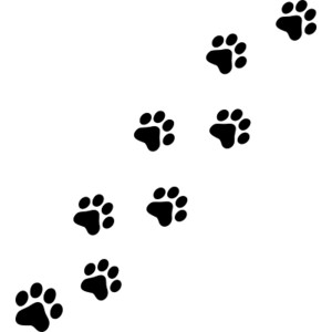 300x300 Cat Paw Print Images Desktop Backgrounds