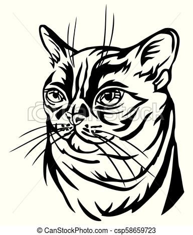 385x470 decorative portrait of burmese cat vector illustration decorative