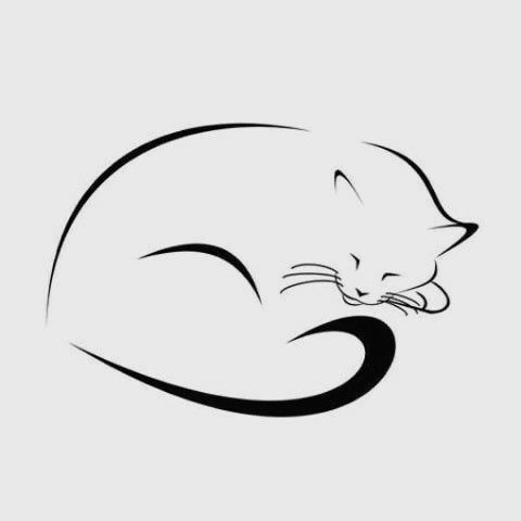 480x480 Drawing Of A Cat Sleeping A Sleeping Cat S Silhouette