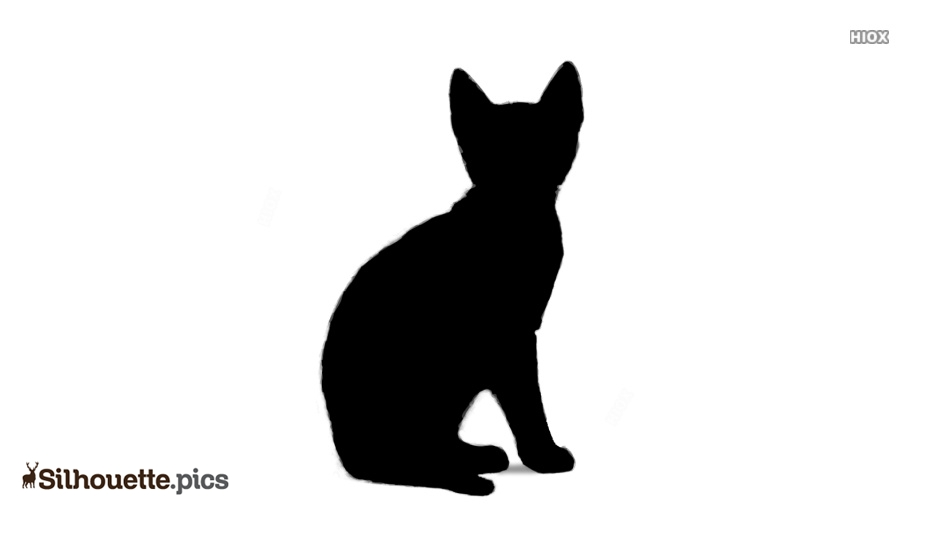 934x534 Bengal Kittens Silhouette Vector, Clipart Images, Pictures