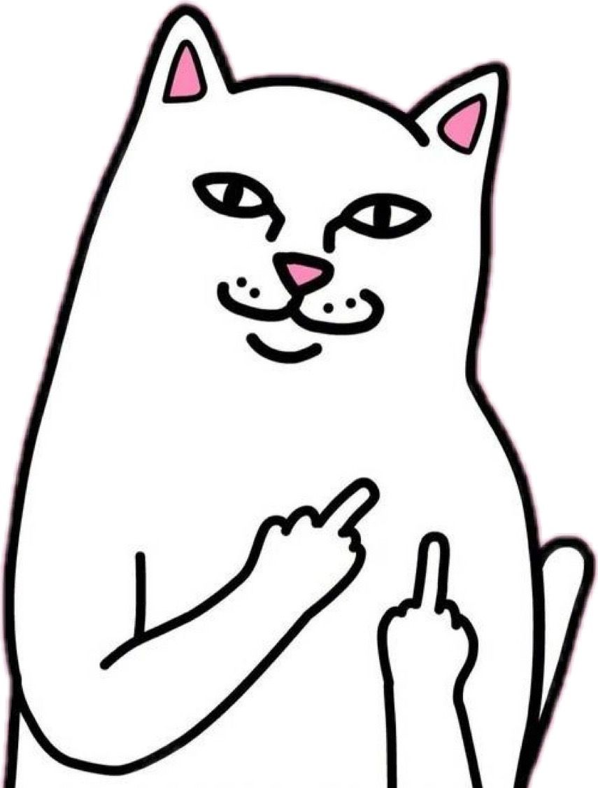 Cat Stick Figure Drawing