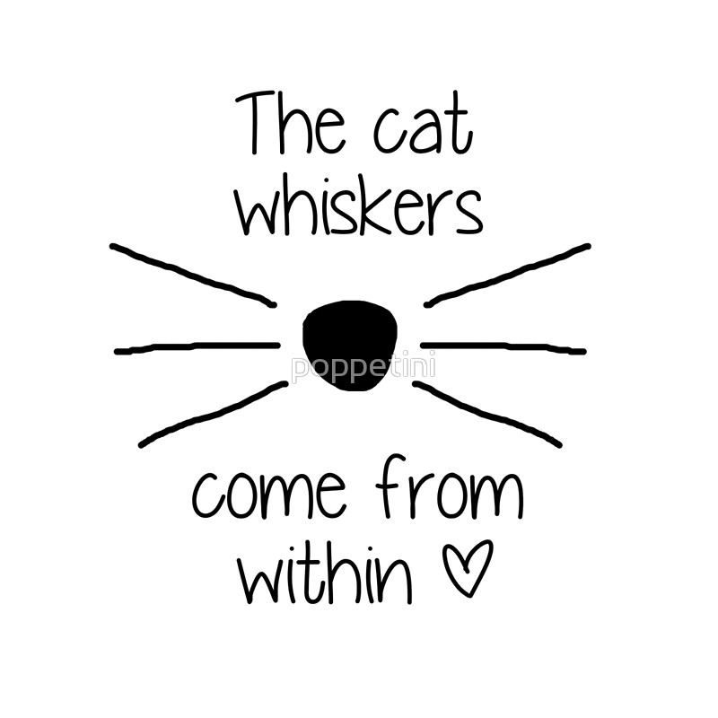 800x800 Drawn Cat Whisker