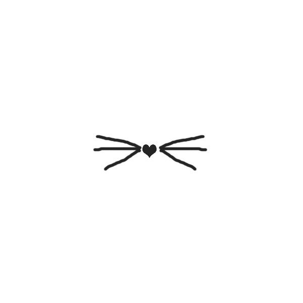 600x600 Texturas Cat Whiskers Liked On Polyvore Kitten
