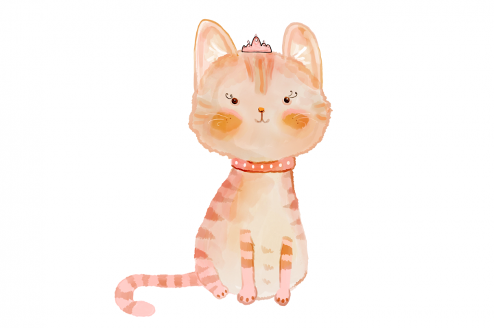720x479 Cat, Illustration, Drawing, Transparent Png Image Clipart Free