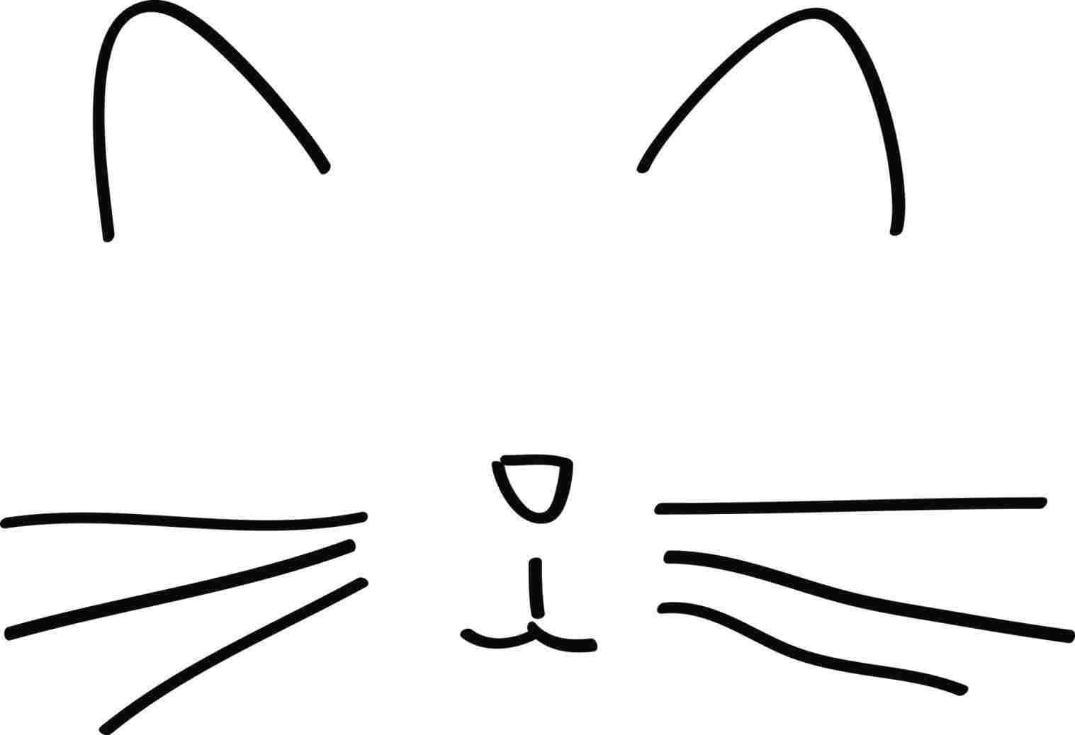 1517x1038 Cat Drawing Step
