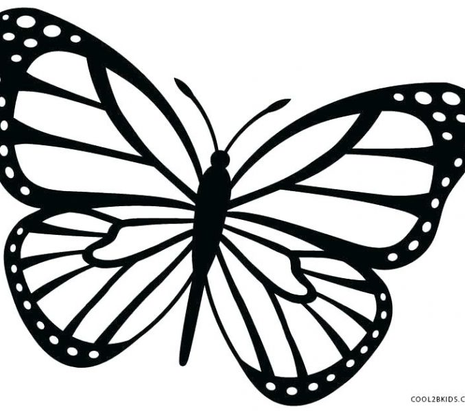 678x600 Butterfly Coloring Pages Butterfly Coloring