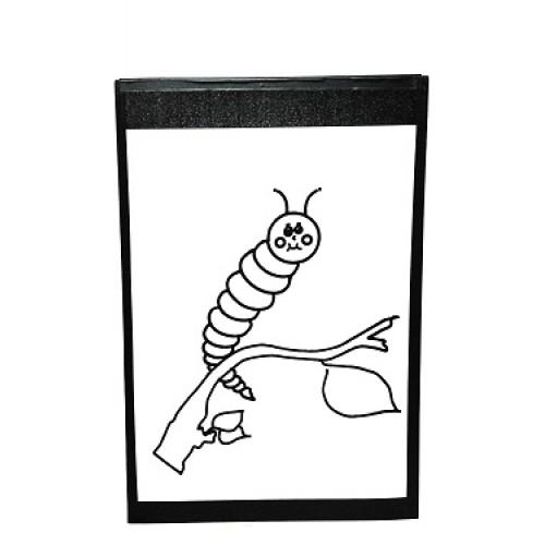 500x500 Instant Art Insert Caterpillarutterfly