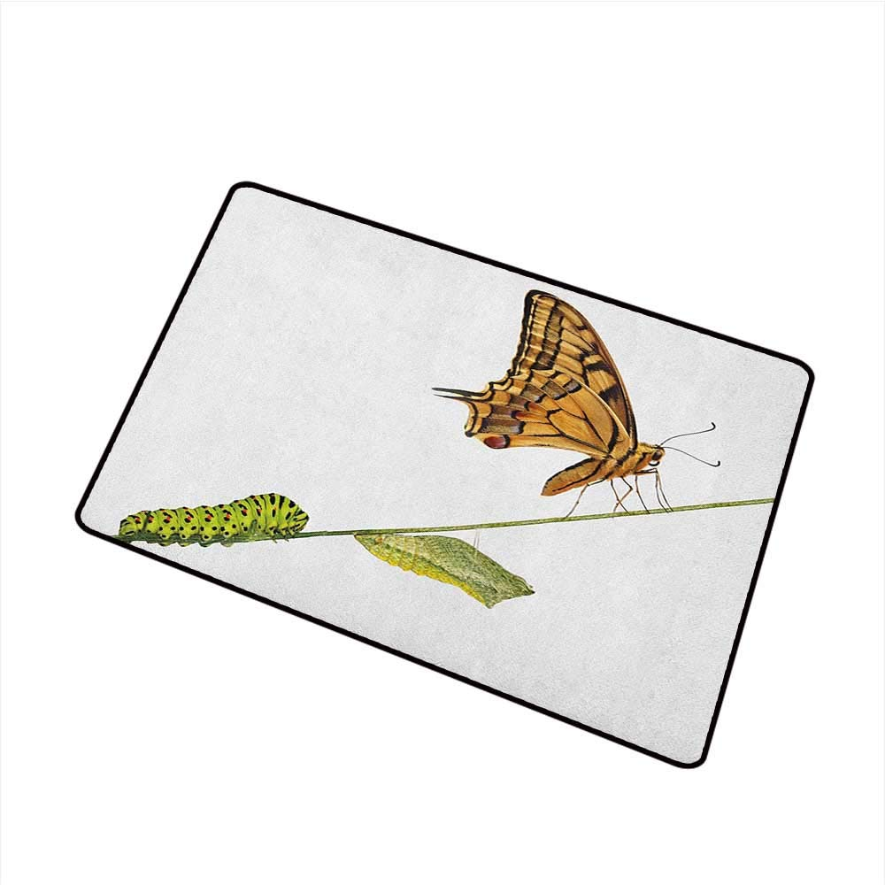 1000x1000 Swallowtail Butterfly Funny Doormat Caterpillar Pupae